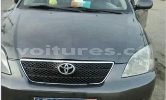 Acheter Occasion Voiture Toyota Corolla Noir à Bangui, Commune de Bangui
