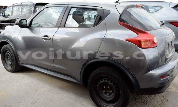 Acheter Importé Voiture Nissan Juke Autre à Import - Dubai, Bamingui-Bangoran