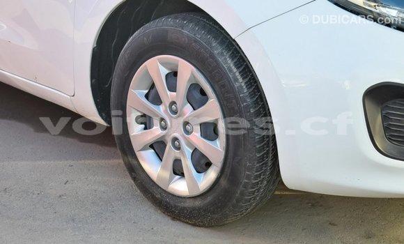 Acheter Importé Voiture Kia Rio Blanc à Import - Dubai, Bamingui-Bangoran