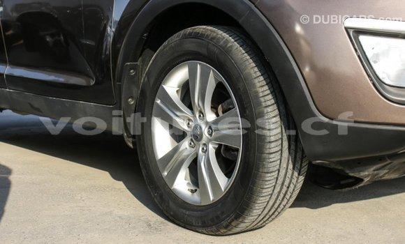Acheter Importé Voiture Kia Sportage Marron à Import - Dubai, Bamingui-Bangoran