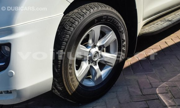 Acheter Importé Voiture Toyota Prado Blanc à Import - Dubai, Bamingui-Bangoran