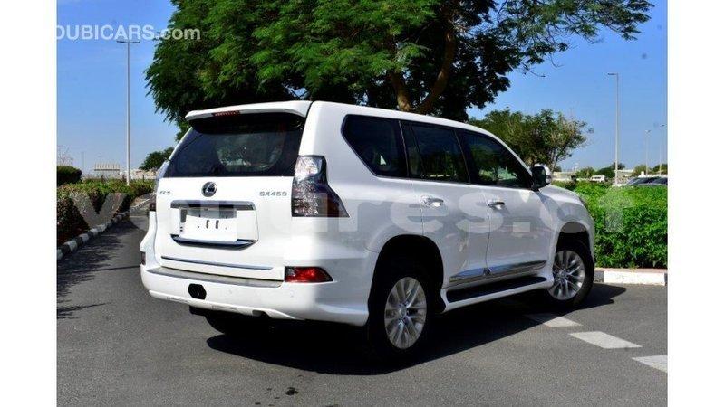 Big with watermark lexus gx bamingui bangoran import dubai 3173