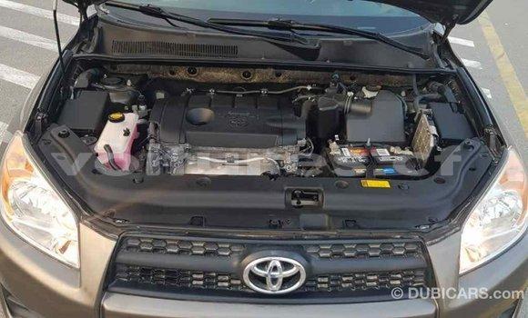 Acheter Importé Voiture Toyota 4Runner Marron à Import - Dubai, Bamingui-Bangoran