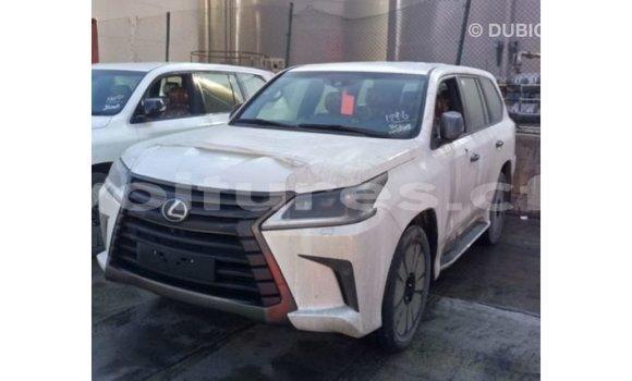 Acheter Importé Voiture Lexus LX Blanc à Import - Dubai, Bamingui-Bangoran